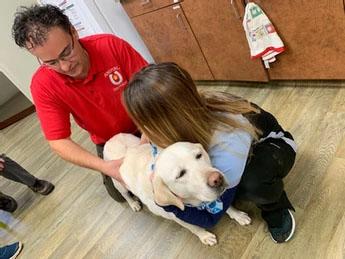 Dr Jason operating on a dog